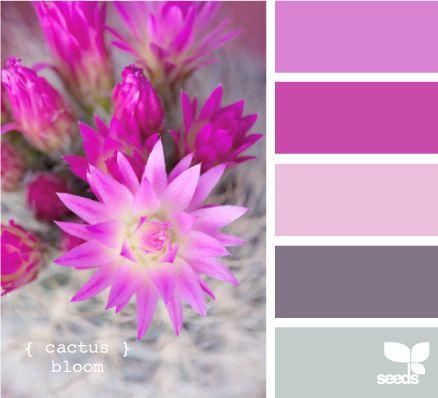 Las 25 mejores ideas sobre colores que combinan en - Colores que combinan con rosa ...