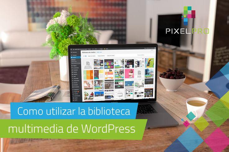 La biblioteca multimedia de WordPress le proporciona distintas funcionalidades básicas para gestionar y editar con eficiencia los archivos multimedia.