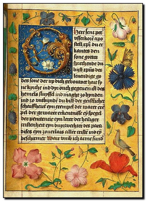 91 best illuminated manuscripts images on pinterest for Divan 6 letters