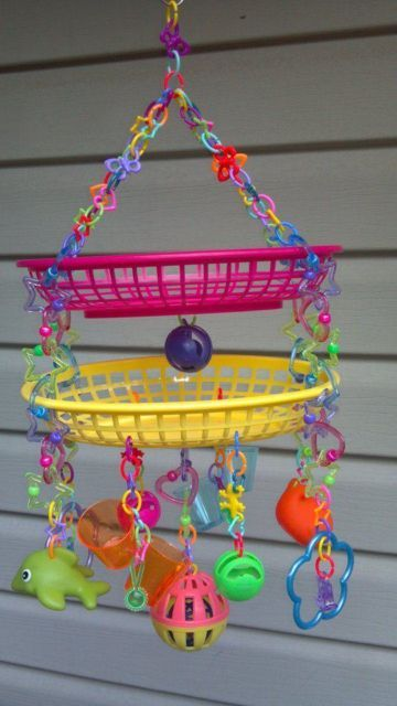 sugar glider/bird toy   eBay. This would be perfect for our friends sugar gliders.