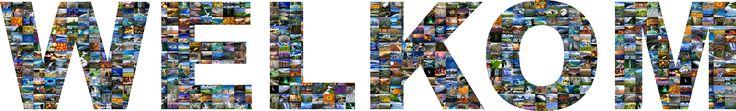 Deze letters zijn gevuld met foto's, dit kunnen standaard foto's zijn, maar ook je eigen foto's. De letters kunnen onderdeel van bijvoorbeeld een canvasdoek zijn, maar ze kunnen ook worden uitgesneden in elk gewenst formaat.