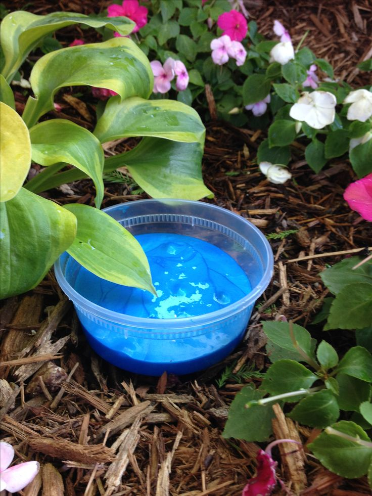 Sapphire Jiggly Slime  Made with: Glue, Water and Borax (or any slime activator), Lotion or Water, Metallic Blue Paint, Shaving Foam (optional), and Foaming Soap (optional)