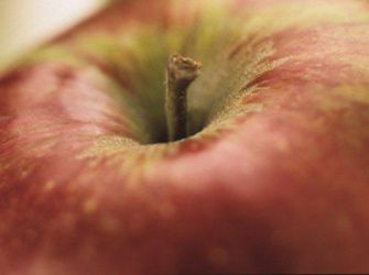 Recepten - Appel in de magnetron
