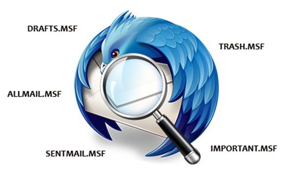 Free #Thunderbird #Viewer to Preview #Evidence from Thunderbird #Email #Database