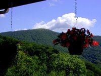 Madison County NC Real Estate Yancey County NC