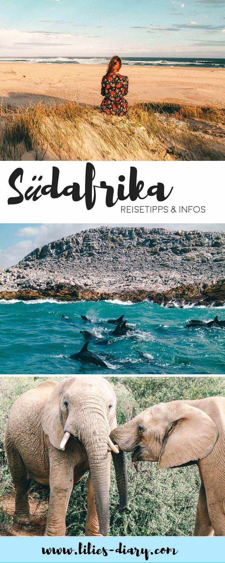 7 aventuras que puedes experimentar en Sudáfrica en el Cabo Oriental