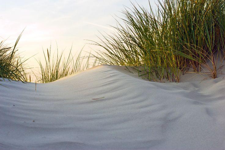 fotobehang strand - Google zoeken