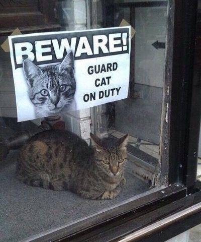 Be afraid, be very afraid !