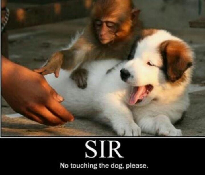 Sir...please.