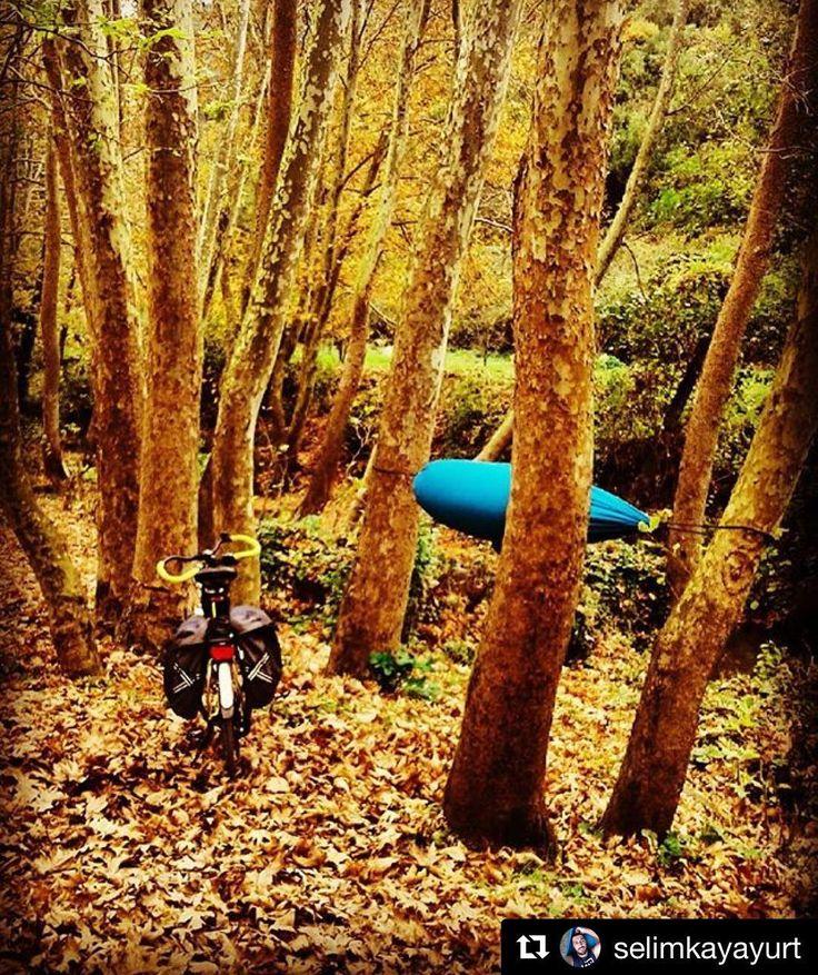 Doğada kaybolun... @selimkayayurt Teşekkürler #doğa #sonbahar #kamp #bisiklet #bisikletturu #bubisiklet #mersinbisiklet #bisikletkeyfi #bisikletaşkı #bisikletliyaşam #bisikletizm