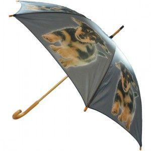 teckel paraplu  honden