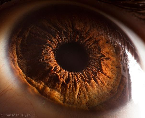 Don't know about you guys, but we just love looking at things really close up! So, we are very excited to introduce you to an Armenian physics teacher Suren Manvelyan who used his friends, colleagues and pupils as models to make amazing close-ups of the human eye. He never thought he would see anything like that - when viewed really close up our eyes look like some dramatic surfaces of far and unknown planets. You have to see it!