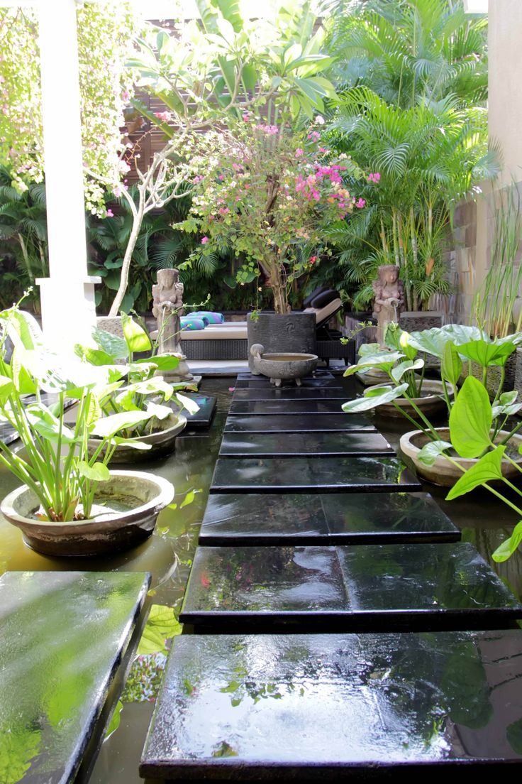 294 Best Tropical Water Features Images On Pinterest