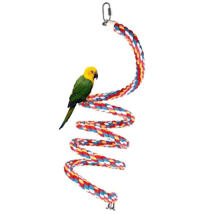 3 4 In Octagon Bird Toys : Best ideas about parrot bird on pinterest iris
