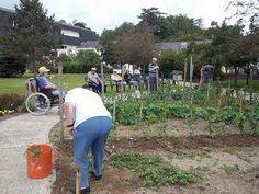 """Jardin thérapeutique -  """"le jardin est reconnu comme un outil thérapeutique favorisant la santé et le bien-être de la personne âgée. """""""
