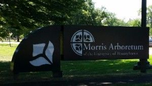 Morris Arboretum and Compton Cafe for lunch