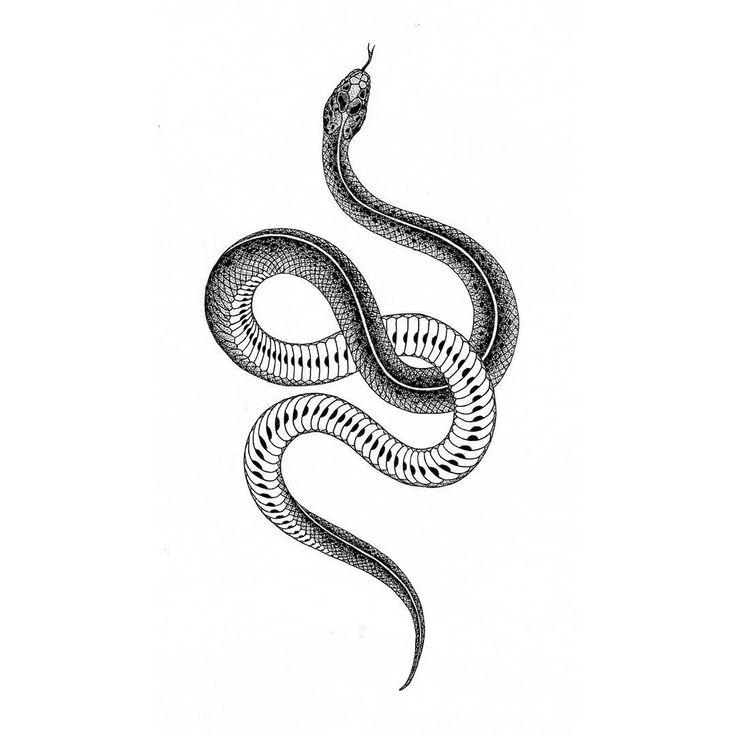 змея рисунок тату увеличенного просмотра фото