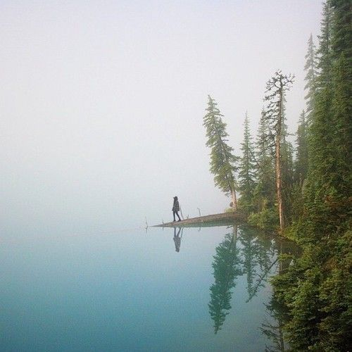 Another fogging beautiful day in Banff. Photo by: @ananya.ray... (via Bloglovin.com )