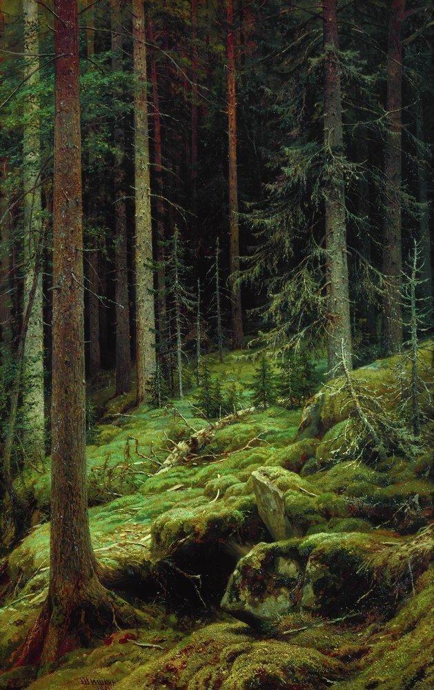 Druids Trees: Dark #forest.