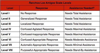 A Review of the Ranchos Los Amigos Scale - Swope, Rodante P.A.