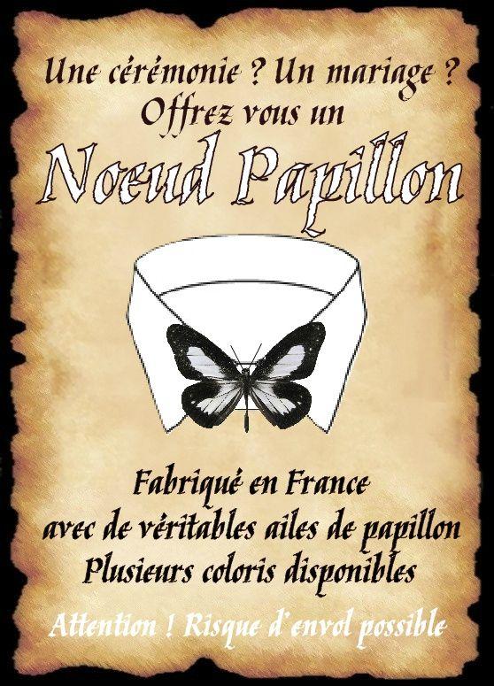 affiche noeud papillon