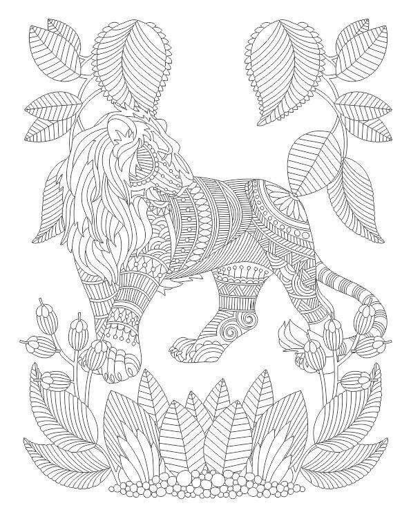 Advanced Coloring Lion Page