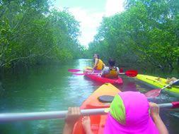 Sea Kayaking - Nice and Easy