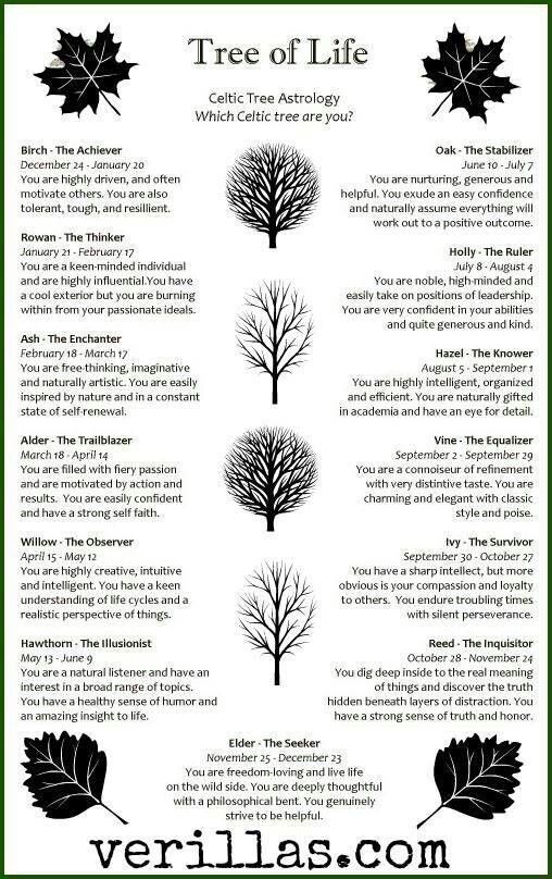 Celtic Trees and Personality Traits... I am not sure that this is traditional, but it does seem to be accurate.