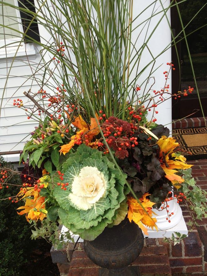 Fall container planting   Grasses, bittersweet, preserved leaves, mums, kale, coral bells