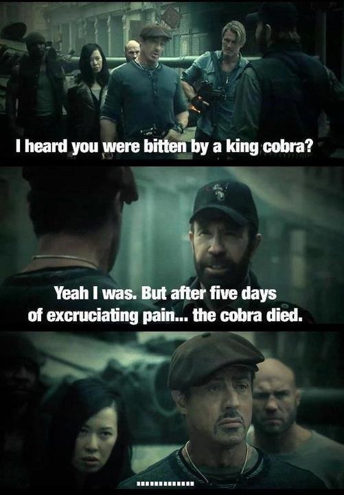 Expendables 2.. good movie