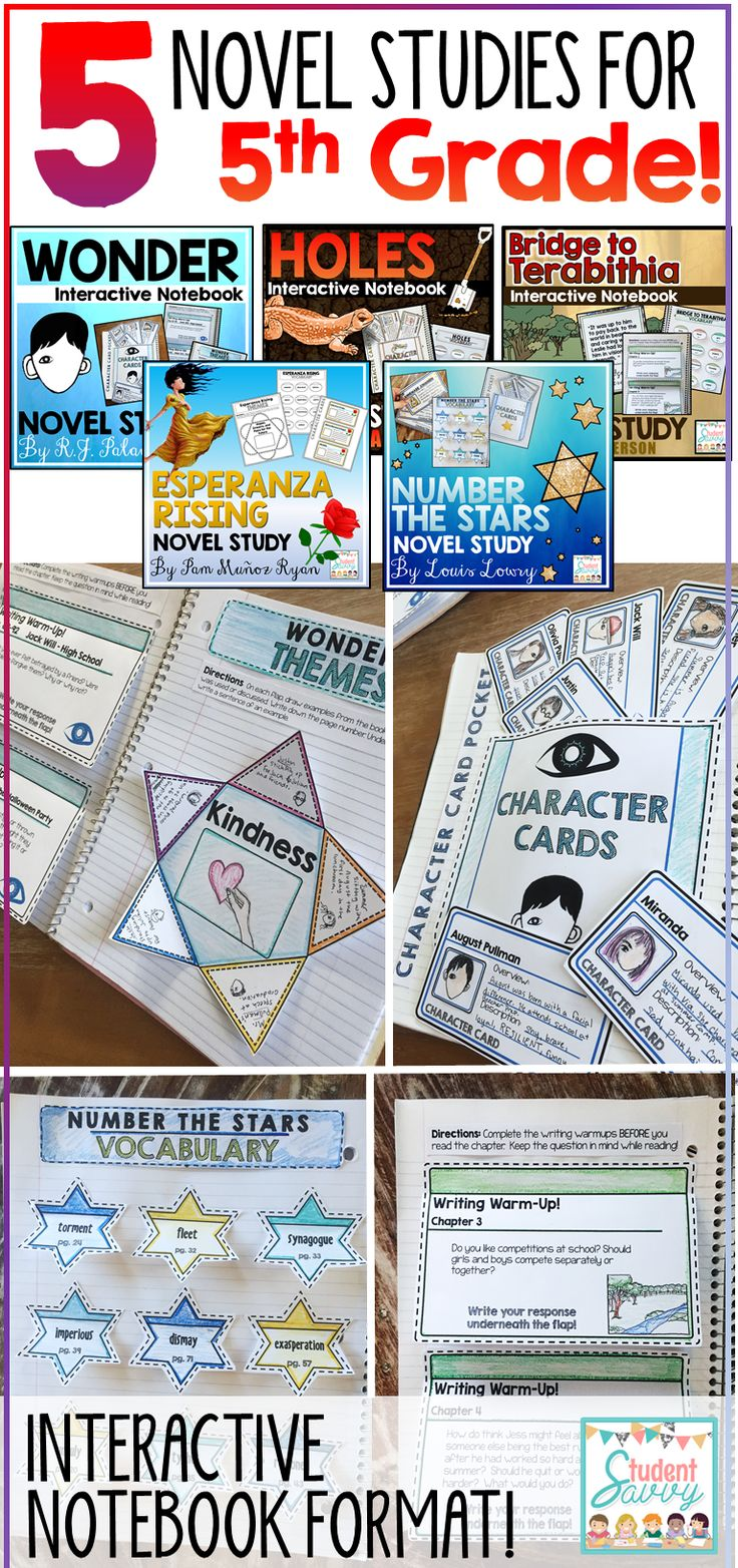 5 Novel Studies for 5th Grade! Wonder, Esperanza Rising, Holes, Number the Stars, Bridge to Terabithia - Novel Study Bundle