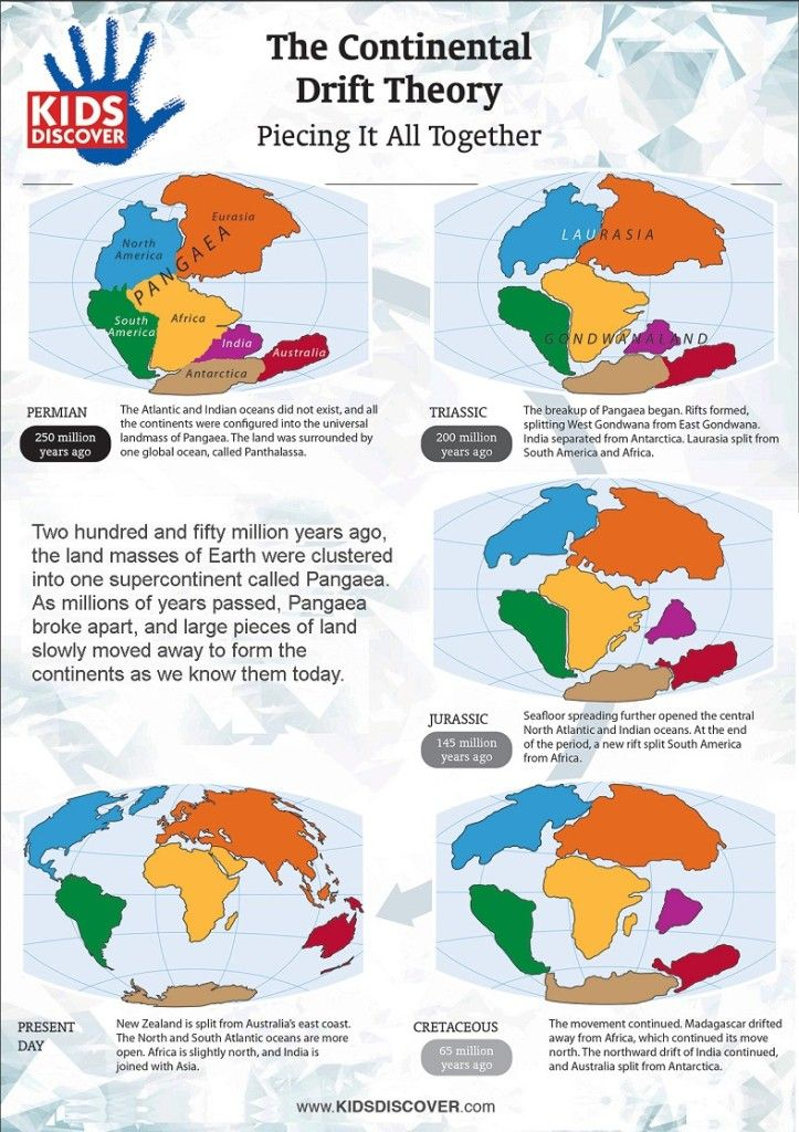 Continental Drift Theory - Infographic