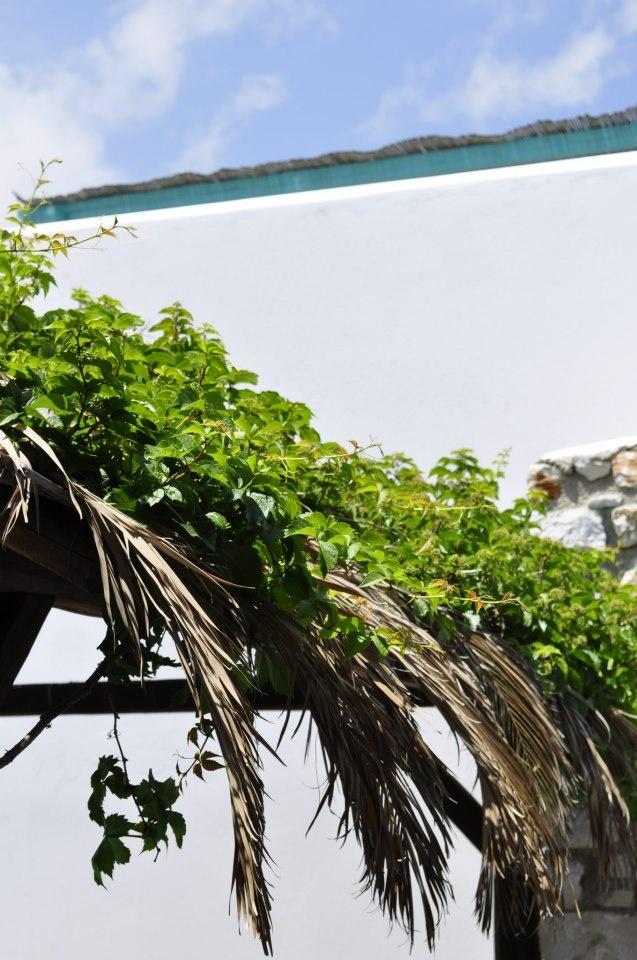 #room #paros #view http://www.aloniparos.com/paros/view/home