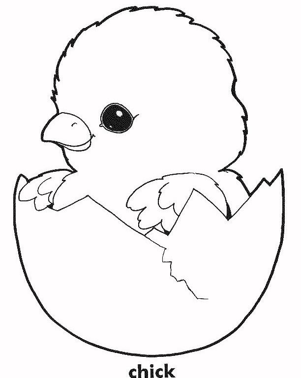 easter chick coloring sheet baby chick coloring page embriodery