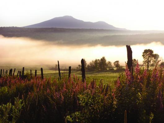 Mont Ham - Ham-Sud - Hiking networks   Eastern Townships (Quebec)
