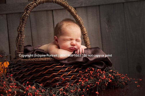Halloween newborn portrait