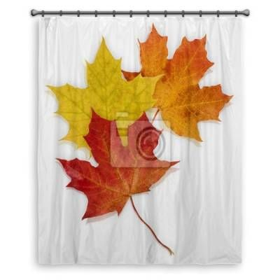 Basic Autumn Leaves Shower Curtains