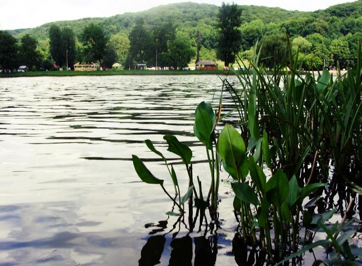 Lake in Винникі (Winniki) Lviv