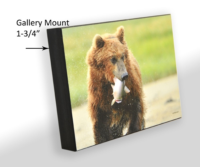 Gallery Mounting and Laminating #gallerymount