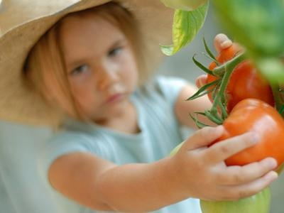 Gärtnern mit Kindern: Welche Pflanzen eignen sich am besten?