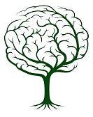 trees drawing : Albero illustrazione del cervello, albero della conoscenza, medico, concetto ambientale o psicologico