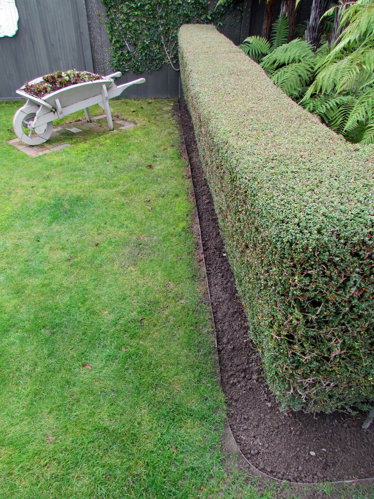 Durable Steel Garden Edging Rigid Enough For Straight Lines