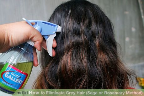 Image titled Eliminate Grey Hair (Sage or Rosemary Method) Step 5