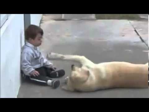 Iubirea dintre un copilas si un caine ! | PawSylvania