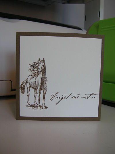 Ardyth's Cards - More Horsey Cards           Paper Inspirations sentiment & Inkadinkado horse