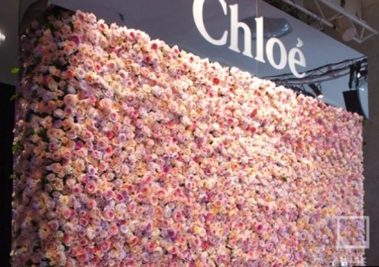 the choloe and the rose essay View chloe deodato, pmp's profile on linkedin, the world's largest professional community chloe has 7 jobs listed on their profile see the complete profile on linkedin and discover chloe's connections and jobs at similar companies.