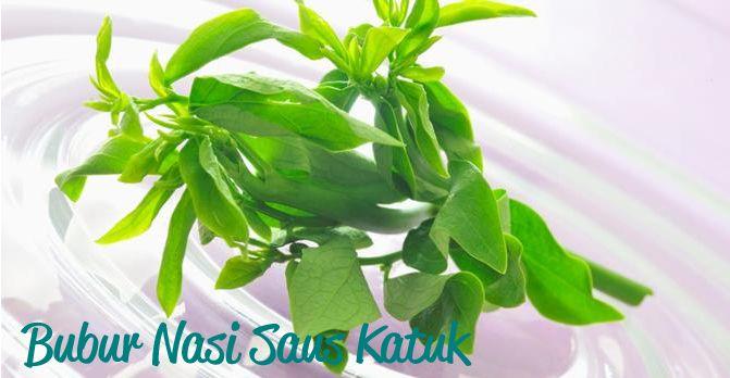Bubur Nasi Saus Katuk :: Rice Porridge with Katuk Sauce :: Klik link di atas untuk mengetahui resep bubur nasi saus katuk