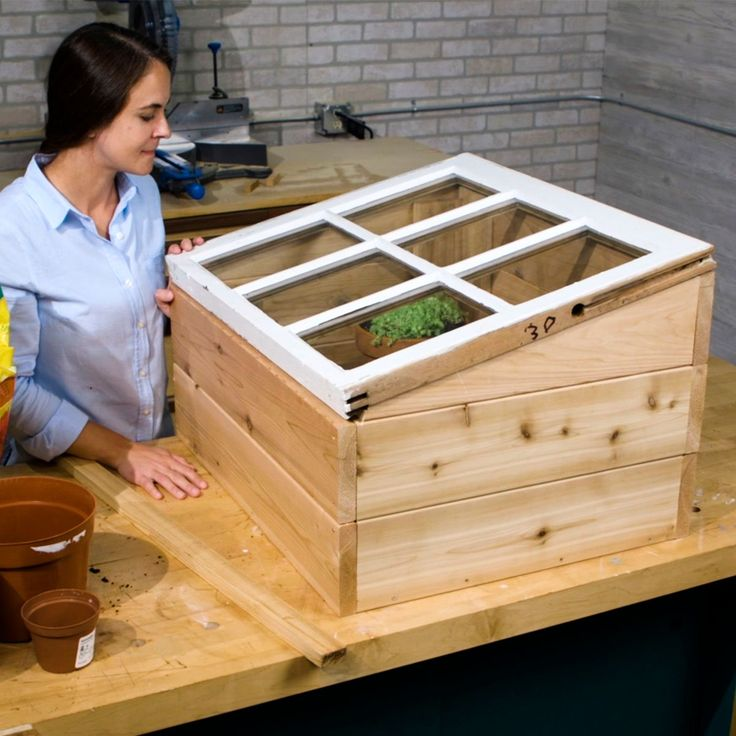 how to use a mini greenhouse