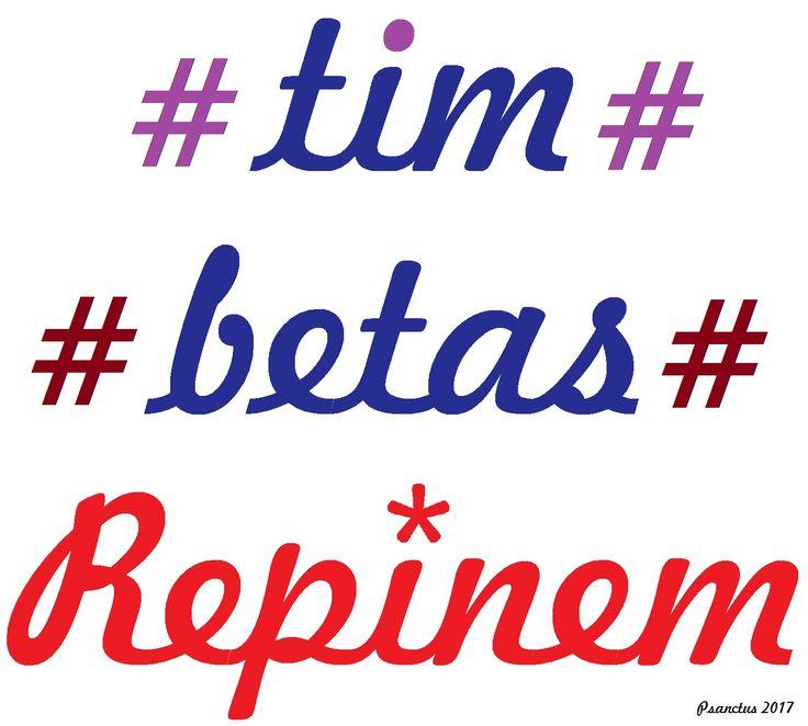 *TIM BETA* *REPIN 2017*