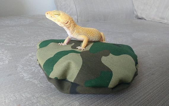 Small Lizard Leopard Gecko Reptile Pouf Pillow Bed Poofy